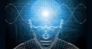 علوم شناختی کنترل انسان Cognitive Science